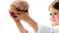 Çocukların beyin gelişimi önemlidir
