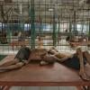 Dehşete düşüren akıl hastanesi fotoğrafları