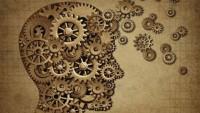 Beynimiz nasıl çalışır?