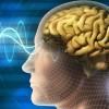 Beyin Gücünüzü Bu Tüyolarla Arttırın!