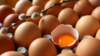 Sakın Yumurta Yemeyin!